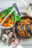 Champignons faits maison de chanterelle sur la casserole Image stock