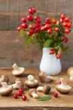 Champignons frais Photo libre de droits