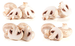 Champignons frais de champignon de paris d'isolement sur le fond blanc Ensemble ou collection photographie stock