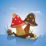 Champignons Royalty Free Stock Image