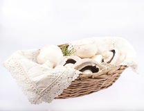 Champignons in wooden basket with lace Royalty Free Stock Photography