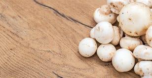 Champignons mushrooms. Stock Photo