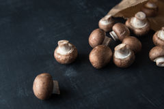 Champignons in paper Bag Royalty Free Stock Photos