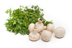 Champignons and parsley Royalty Free Stock Photo