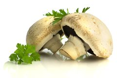 Champignons and parsley isolated on white background. White champignons mushrooms, parsley isolated on white background Stock Image