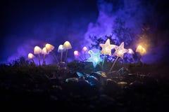 Champignons rougeoyants d'imagination en plan rapproché foncé de forêt de mystère Le beau macro tir du champignon magique ou les  photos libres de droits