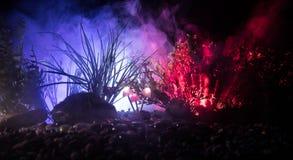 Champignons rougeoyants d'imagination en plan rapproché foncé de forêt de mystère Le beau macro tir du champignon magique ou les  photographie stock libre de droits