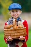 Champignons sélectionnant, saison pour des champignons. image libre de droits