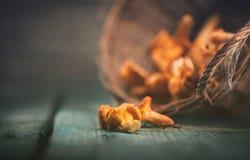 Champignons sauvages crus de chanterelles dans un panier Photos libres de droits