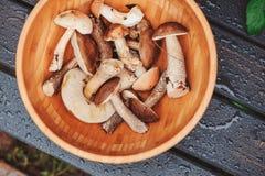 Champignons sauvages de plat en bois Photos stock