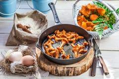 Champignons sauvages faits maison sur la casserole Image stock