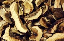Champignons secs Image stock