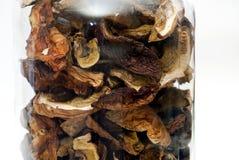 Champignons secs Photo stock