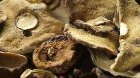Champignons secs sur la surface en bois banque de vidéos