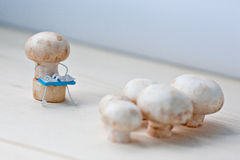Champignons on training Stock Image