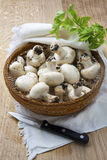 Champignons in a wicker Stock Photos