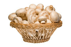 Champignons in wooden basket Stock Photography