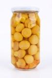 Champinjon Arkivfoton