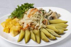 champinjon, inlagda gurkor, potatis och ägg med oliv och citronen, kallt mål royaltyfri bild