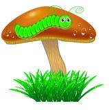 Champinjon med en larv i gräset Royaltyfri Bild