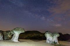Champinjonen vaggar fenomen på natten Royaltyfri Bild