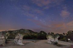 Champinjonen vaggar fenomen på natten Arkivfoton