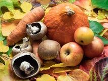 Champinjoner, äpplen, den söta patatoen, röd kurisquash och morötter är royaltyfri foto