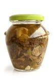 Champinjoner marinaded (morels) i den glass kruset Royaltyfri Fotografi