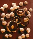 Champinjoner - mat - svampar Royaltyfria Bilder
