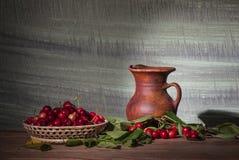 Champinjoner och grönsaker Royaltyfri Foto