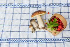 Champinjoner och jordgubbar på en bordduk arkivfoto
