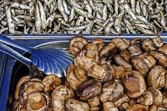 Champinjoner och stekt fisk Royaltyfri Bild