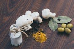 Champinjoner saltar kryddor Royaltyfri Fotografi