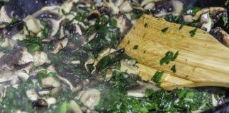 Champinjonragu med grönsaker Arkivbild