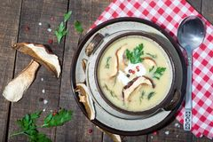 Champinjonsoppa med persilja, dill och svampar Royaltyfria Foton