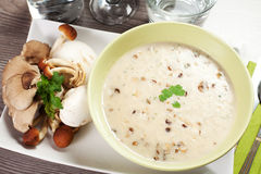 Plocka svamp soup Royaltyfri Bild
