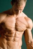 Champion body builder Royalty Free Stock Images