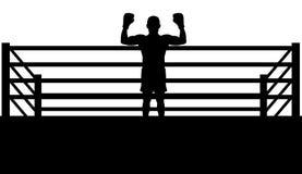 Champion Boxer Stock Image
