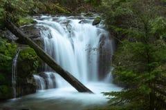 Champion Creek Falls. Cottage Grove, Oregon stock images