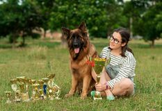 Champion German Shepherd on grass with golden medals