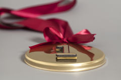Champion Gold Medal with red ribbon Stock Image