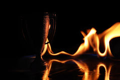 Champion Trophy Fire Royalty Free Stock Photos