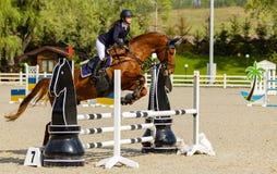Championnat de l'Ukraine sur l'equestri photo libre de droits
