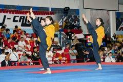 Championnat de Taekwondo Poomsae du monde de WTF Image libre de droits