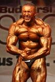 Championnat européen bodybuilding de WBPF Images libres de droits