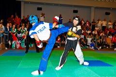 championnat kickboxing 2011 de tiers monde Photographie stock