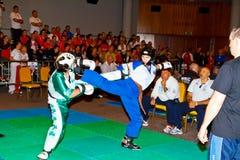 championnat kickboxing 2011 de tiers monde Photographie stock libre de droits