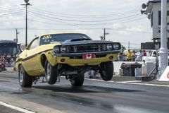 Dodge challenger making a wheelie at the starting line Stock Images