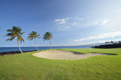 Champions Golf Course, Hawaii Stock Image