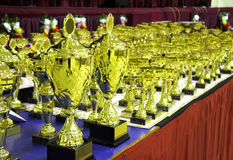 Champions trophies displayed in award ceremony Royalty Free Stock Photos